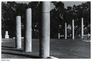 Columns Composition by nadav