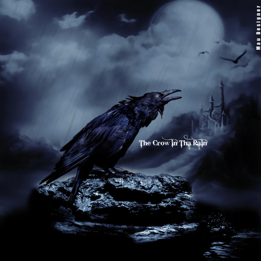 The Crow In The Rain By Mauisback On DeviantArt