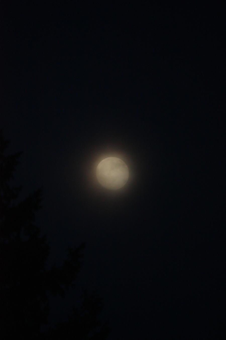 Tonights Moon by BlueDragonRose