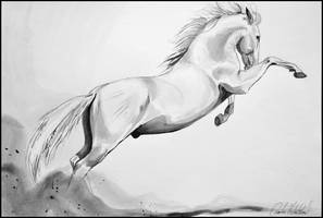 Painting- Kladruby horse by Ennete