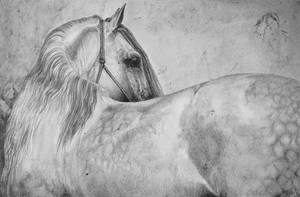 Drawing white horse by Ennete