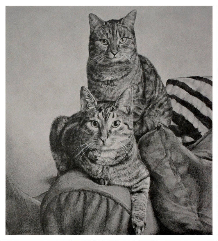 Drawing - Cats by Ennete