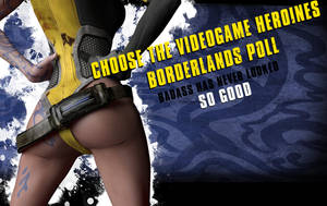 Our Borderlands poll is now live by adventuresinenf