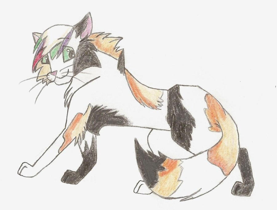 warrior cats coloring pages spottedleaf - photo#24
