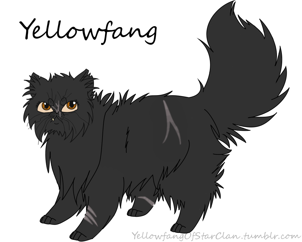 Yellowfang by YellowfangOfStarclan
