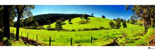 panoramic australia