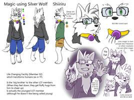 LCF shiiriru reference sheet by Spray-POKA