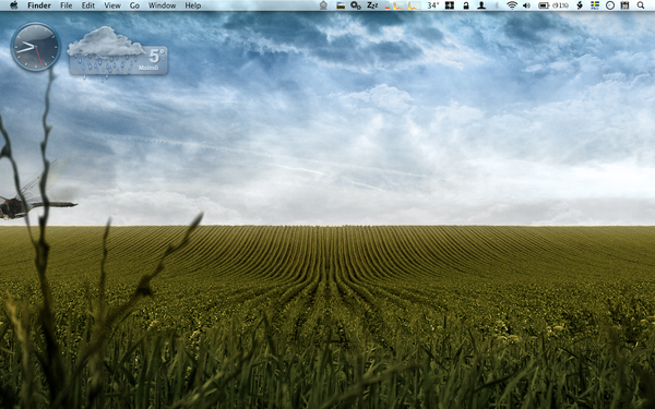 Desktop of January by falafelkiosken