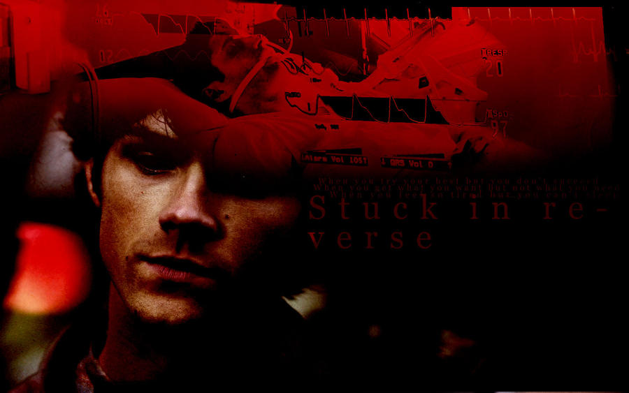 stuck in reverse by siyuri0907