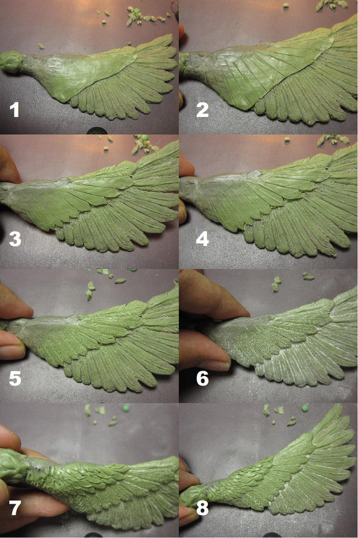 How to sculpt wing and feathers step-by-step by edsa-m