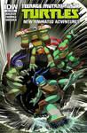 TMNT-Animated-15 Cover-RI