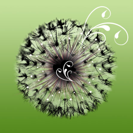 Dandelion CD one by melemel