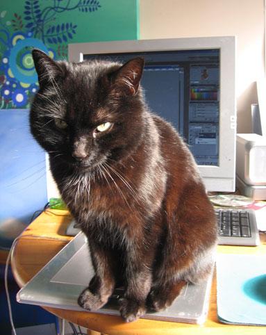 Wacom Cat by melemel