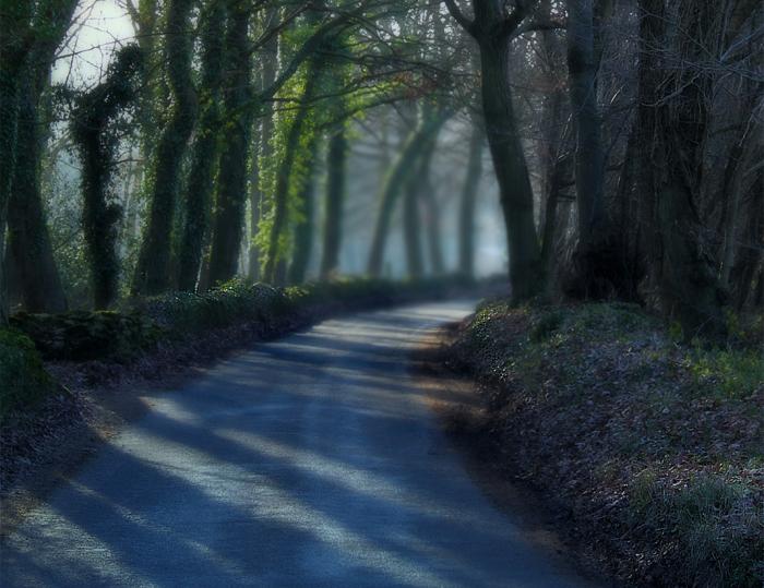Lost Lane by melemel