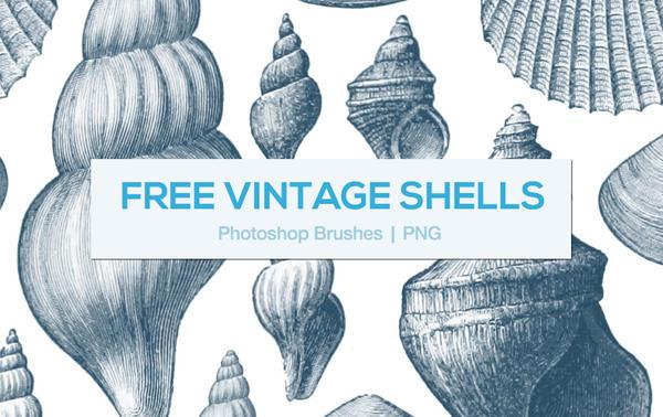 Vintage Shells Photoshop Brushes by melemel