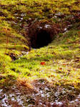 Where the dwarves sleep