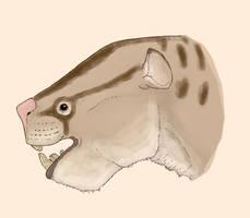 Stylinodon mirus