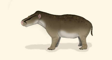 Coryphodon lobatus