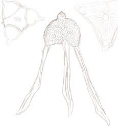 Radiolarian n diatomeae sketch by Mirandikha