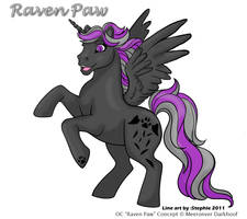 Raven Paw - My Little Pony OC