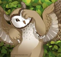 FR: Owlcat Cub by SuperSymmetricCake
