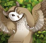 FR: Owlcat Cub