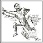 Angular position and intrinsic balance base....! by Adonis2k17