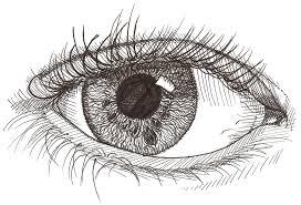 Detailed eye by FallenAngelsForLife