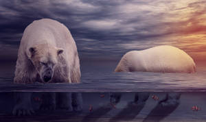 Polar Bears by ChiaraLily9