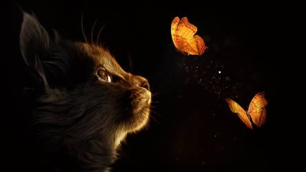 Kitten  Butterfly Glow