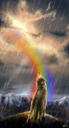 in our rainbow by WolfRoad
