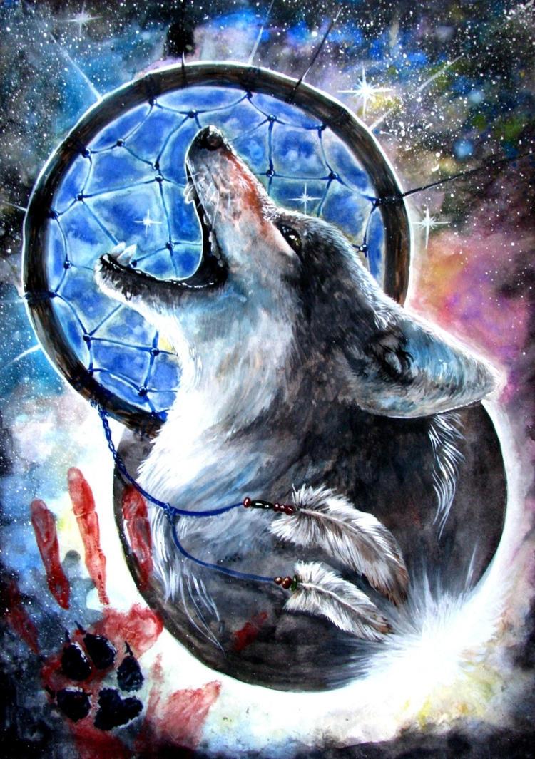 dreamcatcher native wolf spirit wallpaper - photo #3