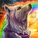 Sun Wolfy