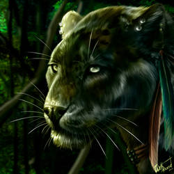 Jungle Book by WolfRoad