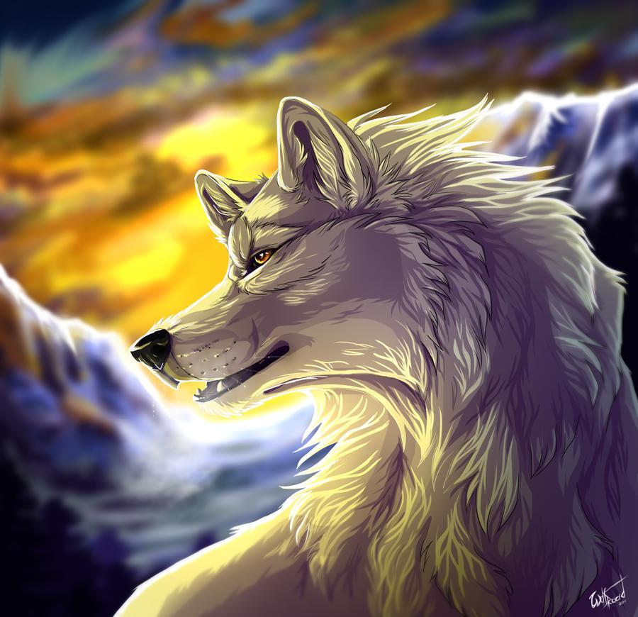 Description des Lieux et monstres présents White_wolf_by_wolfroad-d4uhn3w