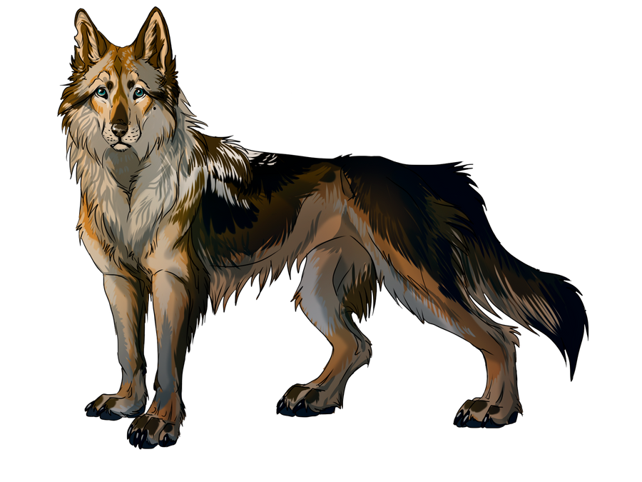 Dog by WolfRoad