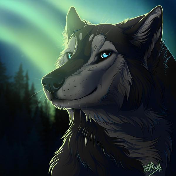 Kiriban for Naxiux by WolfRoad
