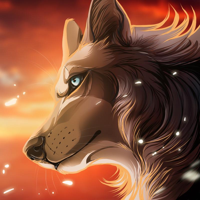 icontrade NamaraDeMao by WolfRoad