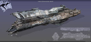 The command ship