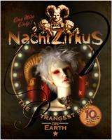 NachtZirkus by stefanparis