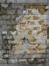 Wall 17