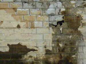 Wall 18