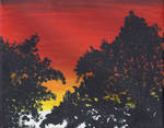 Trees of the Sunset