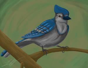 Speed Paint - Bluejay by DarkAdobe