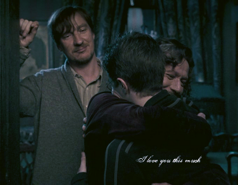 Sirius, Harry, Remus by Janchika