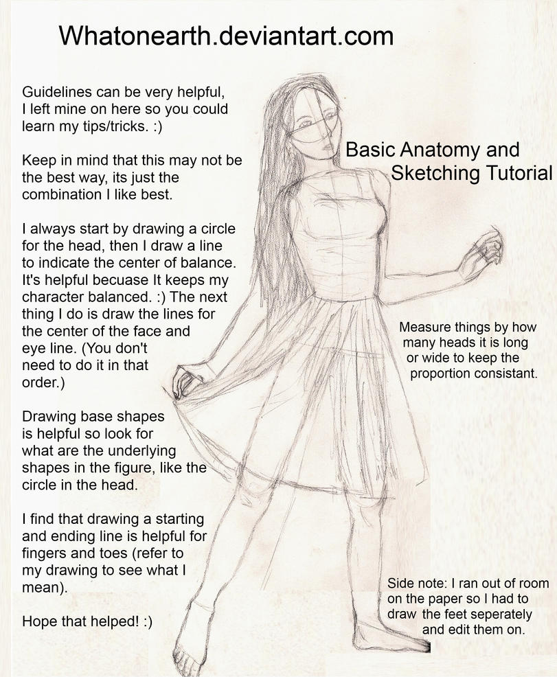 Basic Anatomy And Sketching By Whatonearth On Deviantart