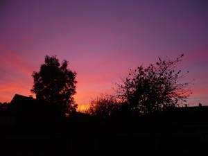 Sun Dawn of the Light