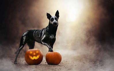 Happy Halloween by Wolfskuss