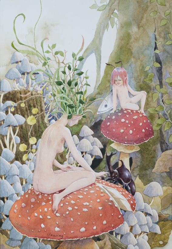 fairy_mushroom by ilxwing