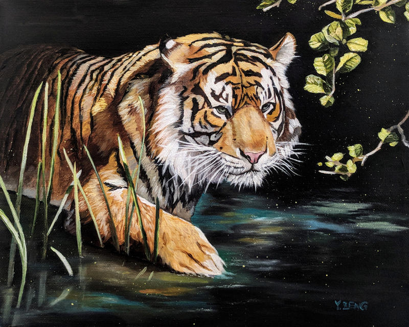 Tiger in the water-oil on canvas by YueZeng-MN